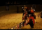 Medieval Times Dallas2