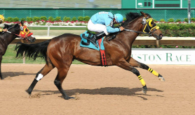 RA-670X377 houston-tx Horse-Races-at-Sam-Houston-Race-Park-365-Things-to-Do-in-Houston-Texas