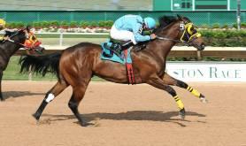 Sam Houston Race Park houston-tx Horse-Races-at-Sam-Houston-Race-Park-365-Things-to-Do-in-Houston-Texas