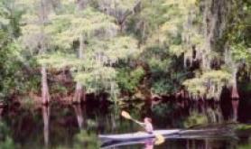 Canoe Escape 1 tampa-fl Canoe-Escape-1-210x210