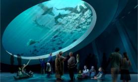 Miami Science Museum 3 miami-fl gulfstream-tank-oculus-1024x659