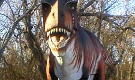 Heard Natural Museum & Wildlife Sanctuary austin-tx heard-museum-dallas-1